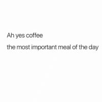 Nothing like surviving on coffee and anxiety to get you through the week 💕💯(@basicbetchproblem 💕): Ah yes coffee  the most important meal of the day Nothing like surviving on coffee and anxiety to get you through the week 💕💯(@basicbetchproblem 💕)