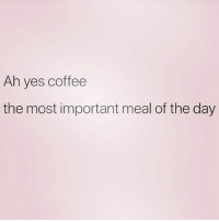 6 cups please!: Ah yes coffee  the most important meal of the day 6 cups please!