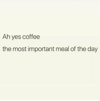 Facts. Follow the fabulous @thespeckyblonde @thespeckyblonde @thespeckyblonde @thespeckyblonde: Ah yes coffee  the most important meal of the day Facts. Follow the fabulous @thespeckyblonde @thespeckyblonde @thespeckyblonde @thespeckyblonde