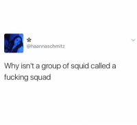 Fucking, Memes, and Squad: ahaannaschmitz  Why isn't a group of squid called a  fucking squad 😂😂