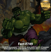 "Memes, Puppies, and SpiderMan: AHEAD  BOOK  Fact #749  ""Hulk loves puppies'. S.H.I.E.L.D., once used a bunch of puppies  to transform Hulk back into Bruce Banner after a mission. Comment below if you love dogs!! What type of dog(s) do you have? - marvel superhero facts marvelfacts supervillain rocketracoon spiderman marveluniverse anime marvelstudios xmen jeremyrenner avengers comics mcu marvelart marvelcomics teamcap civilwar teamironman ironman avengers guardiansofthegalaxy blackpanther captainamerica deadpool hulk captainamericacivilwar ==================================="