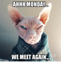 Its coming.: AHHH MONDAY  WE MEET AGAIN Its coming.