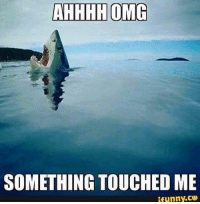 Ifunny Co: AHHHH OMG  SOMETHING TOUCHED ME  ifunny.CO