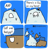 Memes, 🤖, and Fly: AHI  Let me  help  there's a fly  on My head!  GO THESQUARECOMICS Helpful Ship