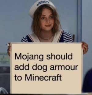 And thats a fact by raccoon_eggs1 MORE MEMES: AHO  Mojang should  add dog armour  to Minecraft And thats a fact by raccoon_eggs1 MORE MEMES