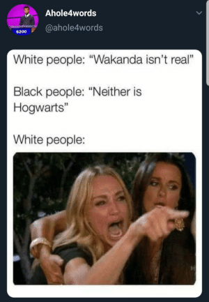 "Bailey Jay, White People, and Black: Ahole4words  $200@ahole4words  White people: ""Wakanda isn't real""  Black people: ""Neither is  Hogwarts""  White people: Fighting words"