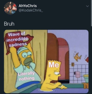 Be Like, Bruh, and Dank: AhYoChris  @KodakChris_  Bruh  Wave of  incredible  sadness  Me  Literally  nothing It really be like that all the times by NotNesbeth MORE MEMES