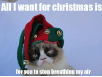 All I want for christmas is...... -__________-
