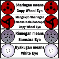 Memes, 🤖, and Eve: aikisame  sharingan means  Copy Wheel Eye  Mangekyo Sharingan  means Kaleidoscope  Copy Wheel Eve  Rinnegan means  Samsara Eye  Byakugan means  White Eye All the meaning are clear except the meaning of the rinnegan! Which eye is your favorite? naruto sharingan mangekyosharingan rinnegan byakugan