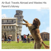 Funny, Money, and Parents: Air Bud: Travels Abroad and Wastes His  Parent's Money  @tank.sinatra And comes back with a lisp