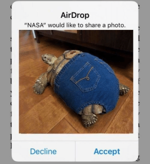 "Nasa, Photo, and Accept: AirDrop  ""NASA"" would like to share a photo.  Decline  Accept they're hiding things from us"