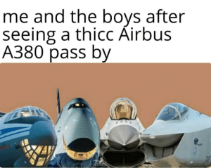 Airplane memes are the future: Airplane memes are the future