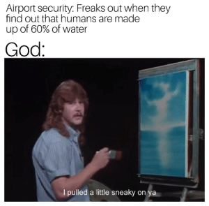 Dank, God, and Memes: Airport security: Freaks out when they  find out that humans are made  up of 60% of water  God  I pulled a little sneaky on  ya Me✈️irl by Shen_W MORE MEMES