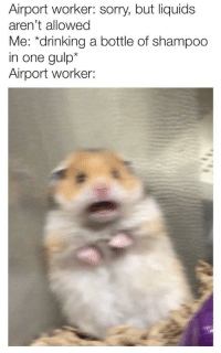 Drinking, Sorry, and Http: Airport worker: sorry, but liquids  aren't allowed  Me: *drinking a bottle of shampoo  in one gulp*  Airport worker: NEW FORMAT INVEST AT ONCE! via /r/MemeEconomy http://bit.ly/2rOhZxJ