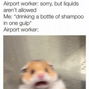 """Drinking, Sorry, and One: Airport worker: sorry, but liquids  aren't allowed  Me: """"drinking a bottle of shampoo  in one gulp*  Airport worker: Found on iFunny"""