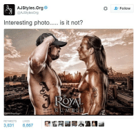 Memes, Aj Styles, and 🤖: AJ Styles. Org  @AJStylesOrg  Interesting photo  is it not?  O  05.08.05 D  02-14-01  RETWEETS  LIKES  3,831  6,667  Follow