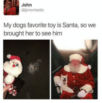 that dog is adorable: ajjmontaldo  My dogs favorite toy is Santa, so we  brought her to see him that dog is adorable
