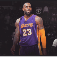 Since we all know LeBron is frustrated with Cavs mgmt, he definitely is not going to stay on a Cavs team that's not competing for a championship (wo Kyrie).. LBJ to LA Confirmed?!👀🔥🚀 _____________________________________________________ Lakers Lalakers TeamLakers LonzoBall JordanClarkson JuliusRandle BrandonIngram TheFuture LakersNews LakersGame Kobe KobeBryant BlackMamba Mamba lebronjames Basketball NBA Laker4Life LakersAllDay michaeljordan GOAT LakerNation GoLakers legend @1ngram4 @jordanclarksons @zo @juliusrandle30 @ivicazubac @larrydn7 @kobebryant shaq drake spikelee NBA nbaallstar @mettaworldpeace37: AKERS  23 Since we all know LeBron is frustrated with Cavs mgmt, he definitely is not going to stay on a Cavs team that's not competing for a championship (wo Kyrie).. LBJ to LA Confirmed?!👀🔥🚀 _____________________________________________________ Lakers Lalakers TeamLakers LonzoBall JordanClarkson JuliusRandle BrandonIngram TheFuture LakersNews LakersGame Kobe KobeBryant BlackMamba Mamba lebronjames Basketball NBA Laker4Life LakersAllDay michaeljordan GOAT LakerNation GoLakers legend @1ngram4 @jordanclarksons @zo @juliusrandle30 @ivicazubac @larrydn7 @kobebryant shaq drake spikelee NBA nbaallstar @mettaworldpeace37