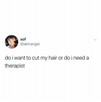 Memes, Hair, and Time: @akirangei  do i want to cut my hair or do i need a  therapist Post 1544: it's time u finally follow @kalesaladquotes
