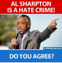 What do you think about Al Sharpton?: AL SHARPTON  IS A HATE CRIME!  IsThatBaloney.com  DO YOU AGREE? What do you think about Al Sharpton?