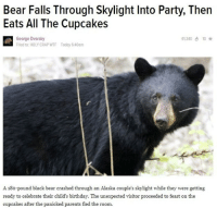 Me_irl: Bear Falls Through Skylight Into Party, Then  Eats All The Cupcakes  George Dvorsky  61340 10  Filed to: HOLY CRAP WTF Today 6:40am  A 18o-pound black bear crashed through an Alaska couple's skylight while they were getting  ready to celebrate their child's birthday. The unexpected visitor proceeded to feast on the  cupcakes after the panicked parents fled the room. Me_irl