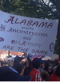 ALABAMA  WHERE  Ancestry.com  AND  eHArmony  ARE TH E SAME  g'