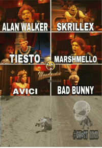 Bad, Skrillex, and Tiesto: ALAN WALKER SKRILLEX  TIESTO MARSHMELLO  SAAC  AVICI BAD BUNNY Awebo