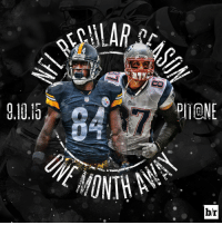 @nfl football is just one month away!!! 🏈🎉🏈🎉🏈🎉: ALAR  Steelers  Riddell  br @nfl football is just one month away!!! 🏈🎉🏈🎉🏈🎉
