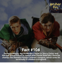 Daniel Radcliffe, Dumbledore, and England: AlartyPotter  Fact #108  Demelza Robins, the Gryffindor Chaser in 'Harry Potter and  the Half Blood Prince, is named after Daniel Radcliffe's favorite  charity: The Demelza Children's Hospice, which cares for  terminally ill children in England. Who is your favorite Harry Potter character!? - harrypotter harrypotterworld harrypotterfandom harrypotterforever harrypotterandthecursedchild jkrowling dumbledore quidditch snape severussnape hogwarts gryffindor slytherin hufflepuff ravenclaw hagrid dobby ronweasley emmawatson danielradcliffe voldemort tomfelton dracomalfoy siriusblack robinwilliams hagrid