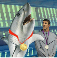 Memes, Fish, and 🤖: Alas, the world's greatest human swimmer is not faster than the world's most terrifying fish. MaybeNextYear DrugTestThatShark