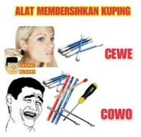 Indonesian (Language), Alate, and Alation: ALAT MEMBERSIHKAN KUPING  CEWE  CoWO