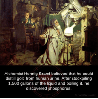 Facts, Memes, and Discover: Alchemist Hennig Brand believed that he could  distill gold from human urine. After stockpiling  1,500 gallons of the liquid and boiling it, he  discovered phosphorus.  fb.com/facts Weird