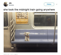 New York, Train, and World: ale  @oafale  Follow  she took the midnight train going anywhere  NEW YORKERS KEEP  NEW YORK SAFE livin in a lonely world