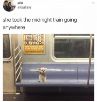 Funny, New York, and Train: ale  @oafale  she took the midnight train going  anywhere  NEW YORKERS KEEP  NEW YORK SAFE What u gonna do if you see this little guy. (@newyorkdog)
