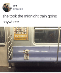 Lean, New York, and Train: ale  @oafale  she took the midnight train going  anywhere   NEW YORKERS KEEP  NEW YORK SAFE  2  t lean on door