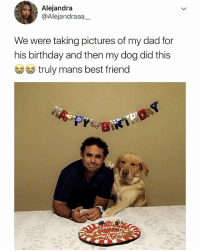 🤣Epic: Alejandra  @Alejandraaa  We were taking pictures of my dad for  his birthday and then my dog did this  truly mans best friend 🤣Epic