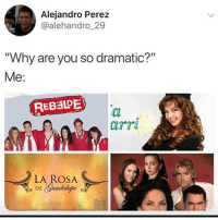 "Memes, 🤖, and Why: Alejandro Perez  @alehandro 29  ""Why are you so dramatic?""  Me:  REB3DE  airr  LA ROSA All TV's fault 😂 MexicansProblemas"