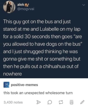 """Chihuahua, Dogs, and Memes: alek  @mogvvai  This guy got on the bus and just  stared at me and Lulabelle on my lap  for a solid 30 seconds then goes """"are  you allowed to have dogs on the bus""""  and I just shrugged thinking he was  gonna give me shit or something but  then he pulls out a chihuahua out of  nowhere  positive-memes  hapry  this took an unexpected wholesome turn  3,430 notes awesomacious:  Chihuahua out of nowhere"""
