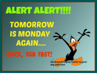 Facebook, Memes, and Mondays: ALERT ALERT  TOMORROW  IS MONDAY  AGAIN.  ICK, RUN FAST!  Facebook bringing humor to your  day with move Pass it on
