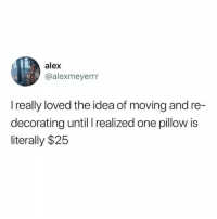 Funny, Memes, and Tumblr: alex  @alexmeyerrr  I really loved the idea of moving and re-  decorating until realized one pillow is  literally $25 Funny Memes. Updated Daily! ⇢ FunnyJoke.tumblr.com 😀