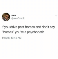 "Horses, Meme, and Drive: alex  @alexOverill  If you drive past horses and don't say  ""horses"" you're a psychopath  1/15/18, 10:45 AM the most specifically accurate meme of all time"