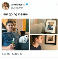 Inception, Memes, and 🤖: Alex Ernst  @AlexErnst  i am going insane  1:52 AM 14 Nov 17 What kind of inception is this? | Follow @aranjevi for more!