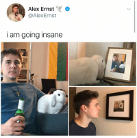 Instagram, Memes, and Best: Alex Ernst  @AlexErnst  I am going insane You always see @kalesalad posts. It's time u finally follow. It's the best account on instagram!