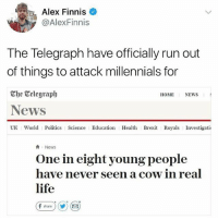 🤣😂🤣😂: Alex Finnis  @AlexFinnis  The Telegraph have officially run out  of things to attack millennials for  Che Celegraph  News  UK World Politics Science Education Health Brexit Royals Investigatio  HOME NEWS  News  One in eight young people  have never seen a cow in real  life  fshare ) (y) ( 🤣😂🤣😂