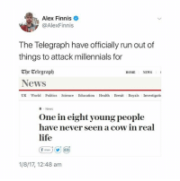 lolol: Alex Finnis  @AlexFinnis  The Telegraph have officially run out of  things to attack millennials for  The Celegraph  News  UK World Politics Science Education Health Brexit Royals Investigati  HOME  NEWS  News  One in eight young people  have never seen a cow in real  life  (f share ) (y) (  1/8/17, 12:48 am lolol