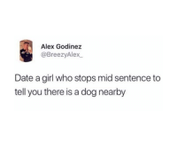 Funny, Tumblr, and Date: Alex Godinez  @BreezyAlex  Date a girl who stops mid sentence to  tell you there is a dog nearby