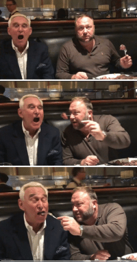 "Alex Jones attempting to be edgy by feeding ""intel"" to Roger Stone: Alex Jones attempting to be edgy by feeding ""intel"" to Roger Stone"