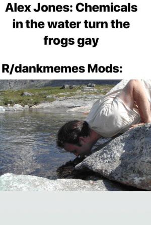 Be Like, Alex Jones, and Water: Alex Jones: Chemicals  in the water turn the  frogs gay  R/dankmemes Mods: It really do be like that (i.redd.it)