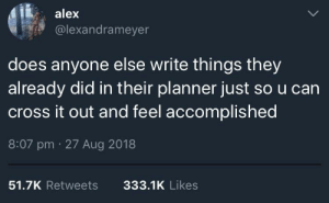 Meirl by amicablecrayon MORE MEMES: alex  @lexandrameyer  does anyone else write things they  already did in their planner just so u can  cross it out and feel accomplished  8:07 pm 27 Aug 2018  51.7K Retweets  333.1K Likes Meirl by amicablecrayon MORE MEMES