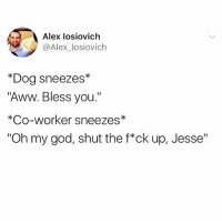 """Aww, Funny, and God: Alex losiovich  @Alex_losiovich  *Dog sneezes*  """"Aww. Bless you.""""  *Co-worker sneezes*  """"Oh my god, shut the f*ck up, Jesse"""" How are you not following @x__social_butterfly__x yet😂🙌🏻"""